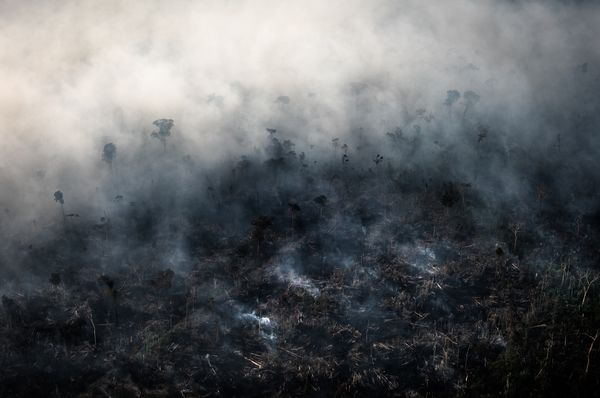 Brazilian Amazon Burns At Record Rate