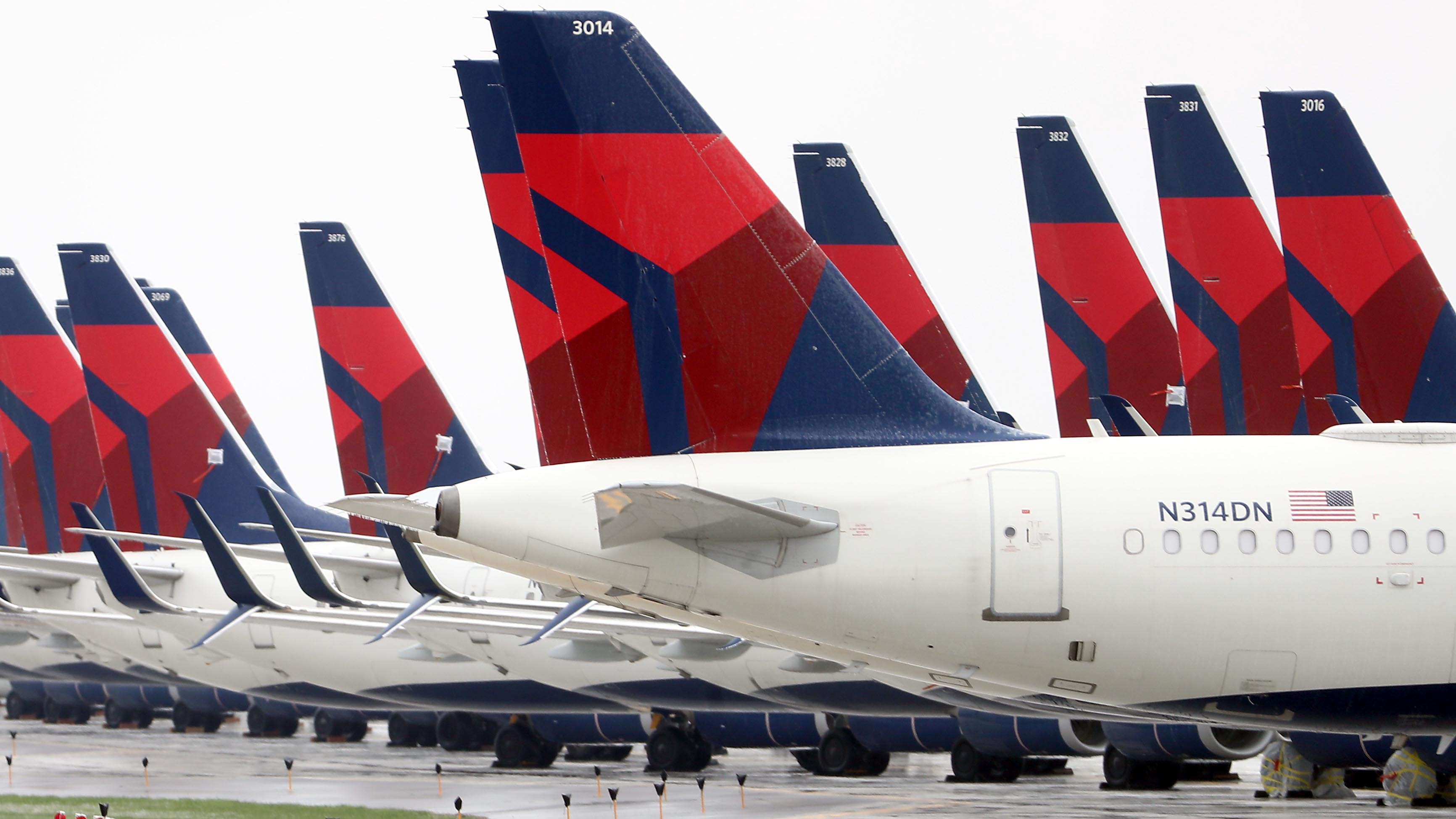 Delta Expects 'Robust' Domestic Travel This Summer