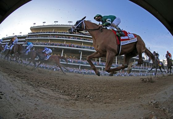 Fistfight Erupts and a Belmont Pick Emerges