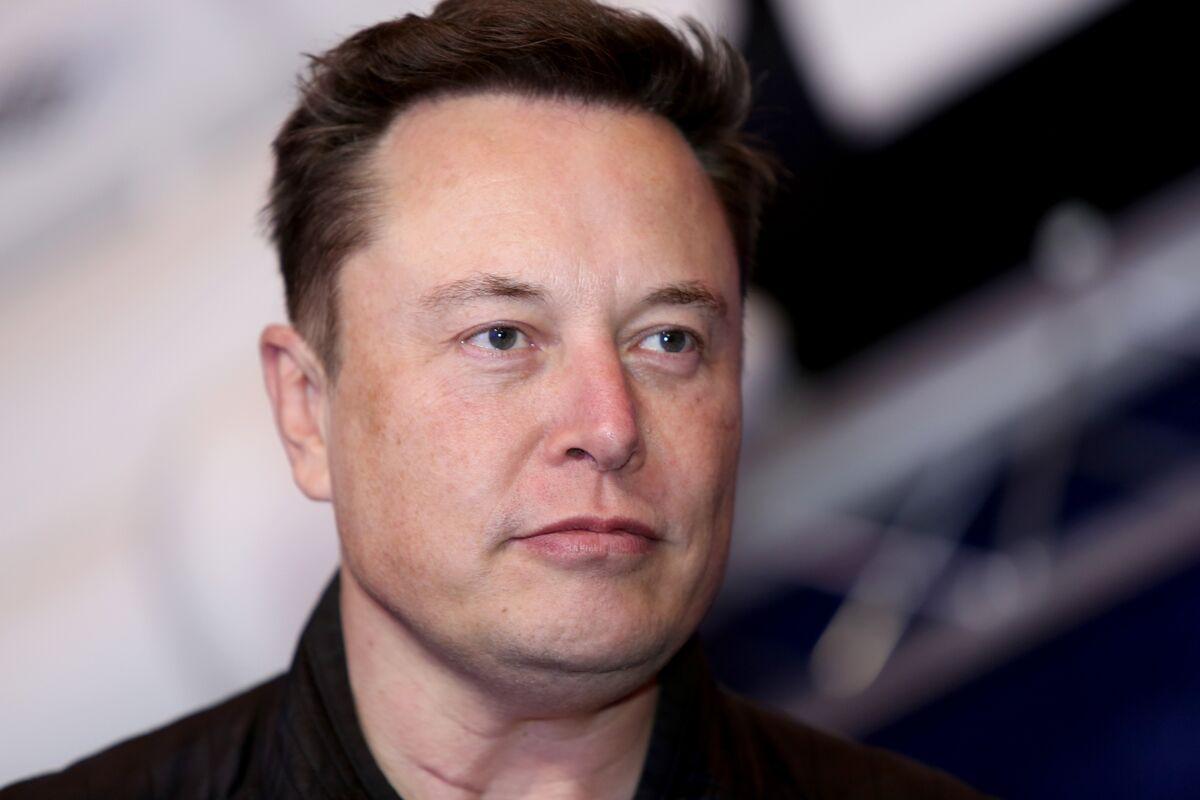Elon Musk Sends Shares of Signal Advance SIGL Soaring on 'Use ...