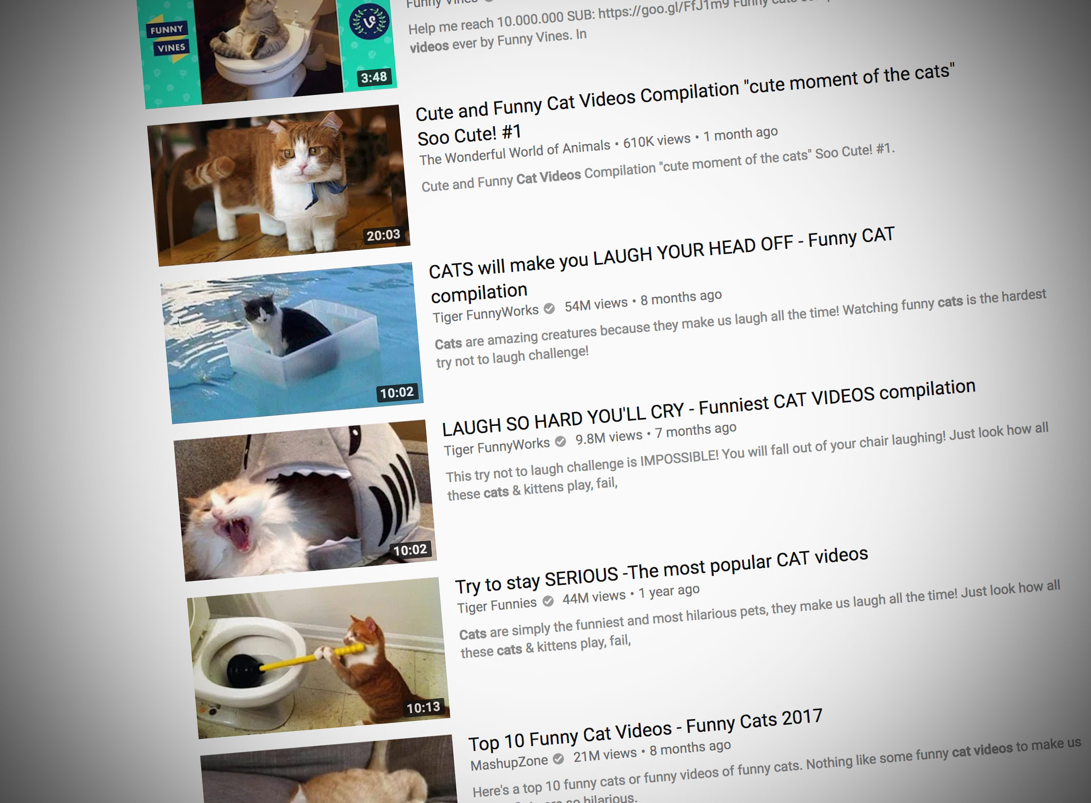 Wallpaper Bloomberg Microsoft Says Its True Cat Videos Distract Workers Bloomberg