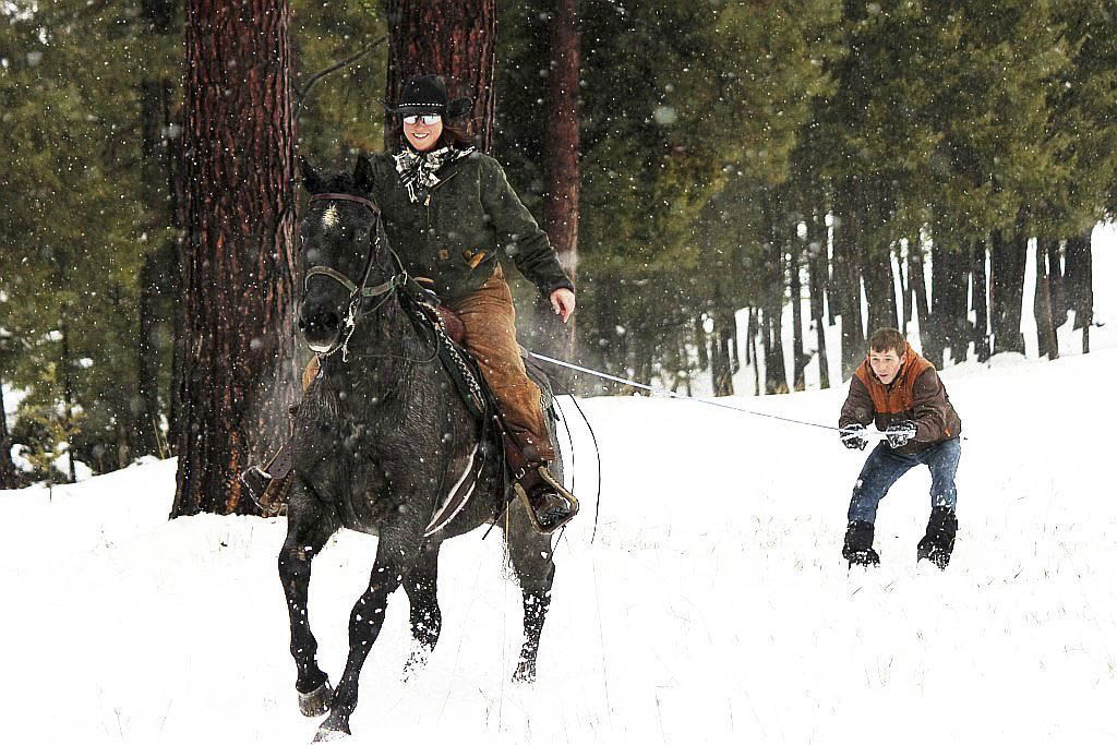 Guide To Skijoring With Dogs And Horses Winter S Wildest Sport Bloomberg