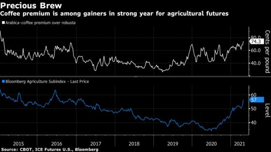 Price Premium for High-End Coffee Reaches Highest Since 2016