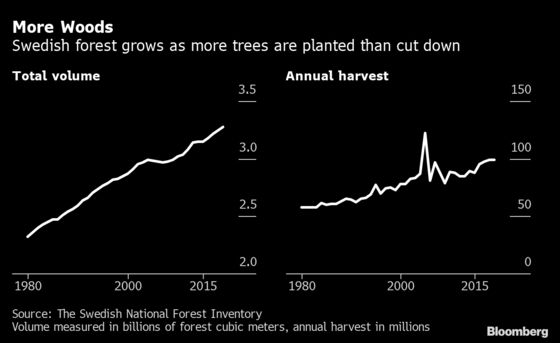 Cutting Down Trees Can Help Save Climate in Forest Industry Math