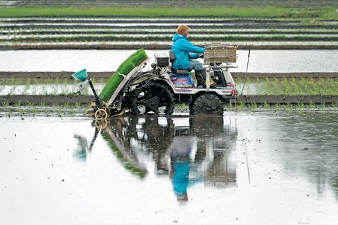 Japan Wants Free Trade. Its Farmers Don't