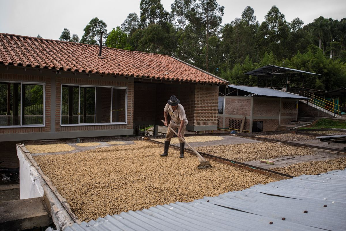 Colombia Stresses Need to Honor Coffee Sales as Prices Surge