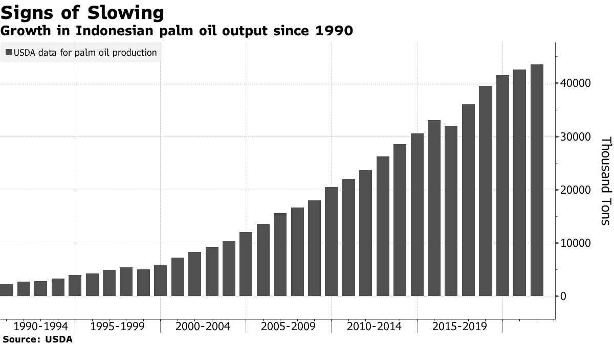 Growth in Indonesian palm oil output since 1990