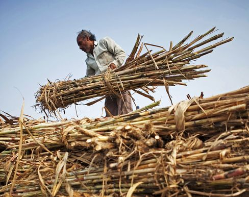 World Food Prices Rise to Record on Sugar, Meat Costs