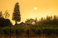California's Heat Crisis Shifts To Fires Raging Statewide