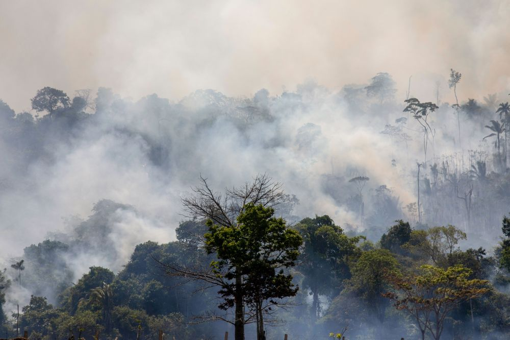 Brazil Fires Threaten U S  National Security - Bloomberg