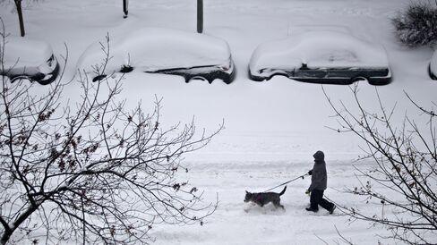 A pedestrian walks a dog through a snow covered street in Washington, D.C