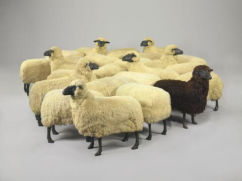 'Mouton de Laine'