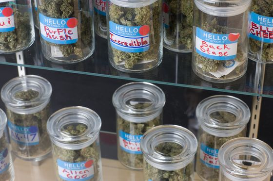 A Crash Course for Investors on the Lingo of (Legal) Weed