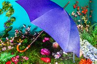 relates to The Case for a $1,200 Umbrella