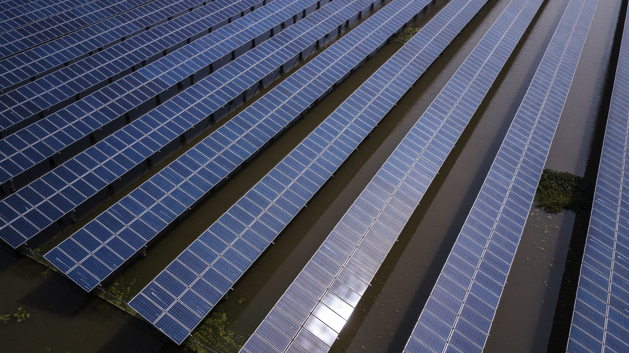 bloomberg.com - Jim Efstathiou Jr - Global Clean Energy Funding Dips 8% as China Cools Solar Boom