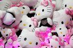 Sanrio Co. Hello Kitty soft toys.