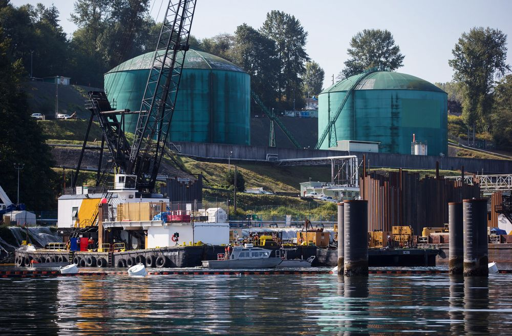 Canada Likely to Proceed With Trans Mountain Expansion