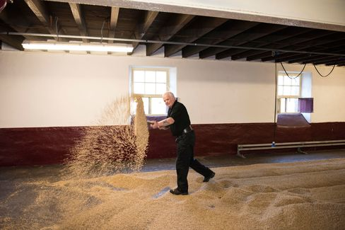 Floor malting is the traditional way of drying barley; the repetitive motion has often led to a rotator cuff injury nicknamed Monkey Shoulder. Given the brisk weather and Stewart's short sleeves, he's more like to suffer elbow frostbite.