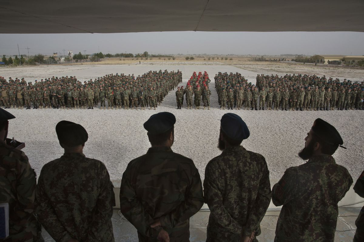 Peace Talks Upend Afghanistan's Least Violent Year Since 2012