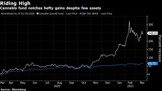 A Tiny Pot Fund With 250% Return Wants Some of the ETF Billions