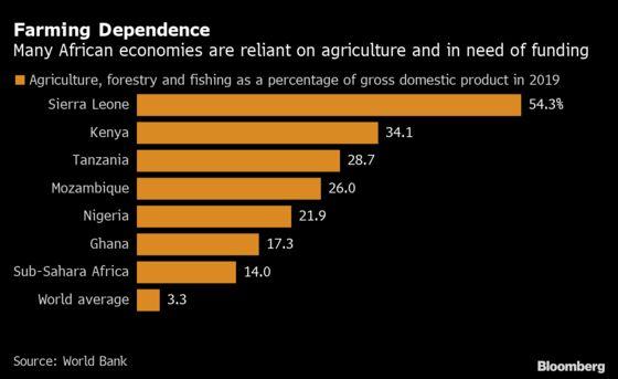 Africa's $31 Billion Farm Funding Gap in Focus for CDC Debt Deal