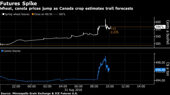 'Shock' Estimates on Canadian Wheat and Canola Crops Boost Prices