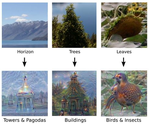 A few examples of how DeepDream might interpret basic structures and turn them into something more complex.