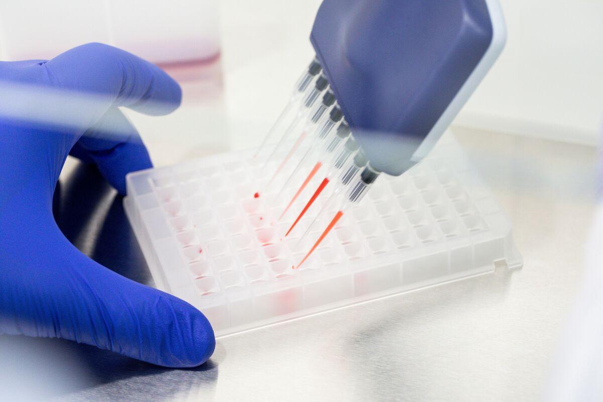 Hong Kong Biotech Firms Eye Listings on China's Star Board