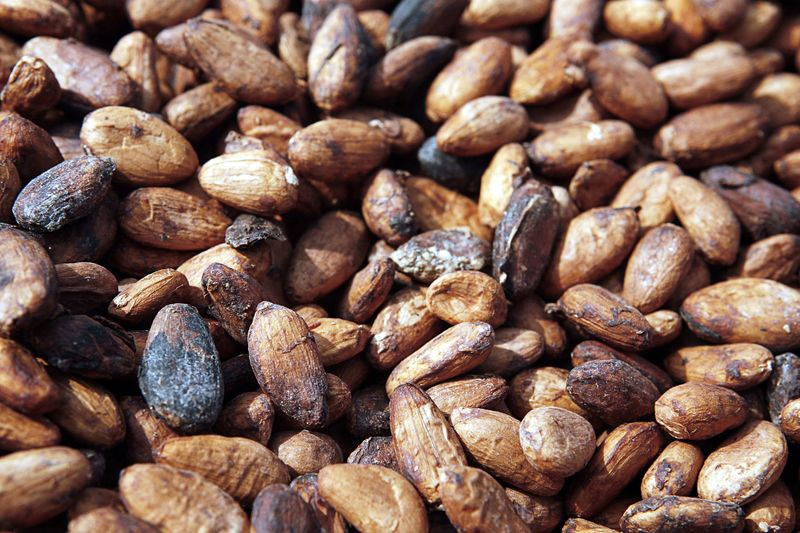 Image - Ghana cocoa beans