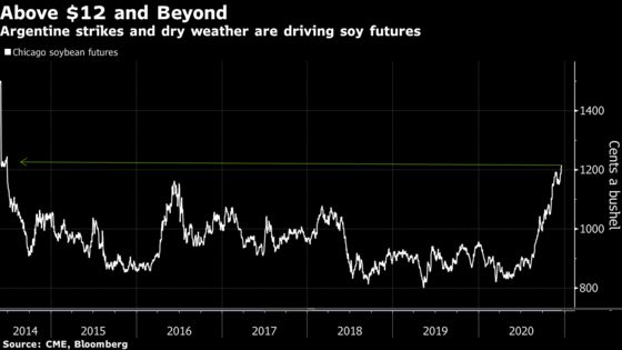 Soy Bulls Rampant as Prices Roar to Six-Year Highs on Argentina