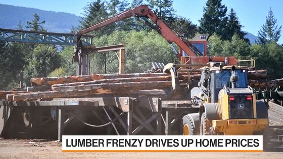 Lumber Prices Soar, But Logs Are Still Dirt Cheap