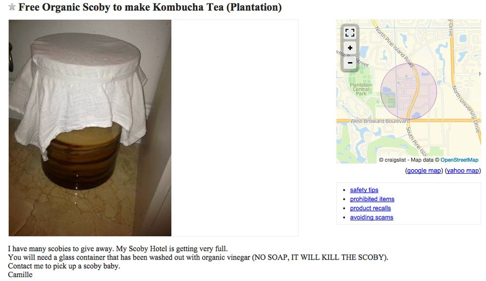 People on Craigslist Want to Give You Bacteria for Free