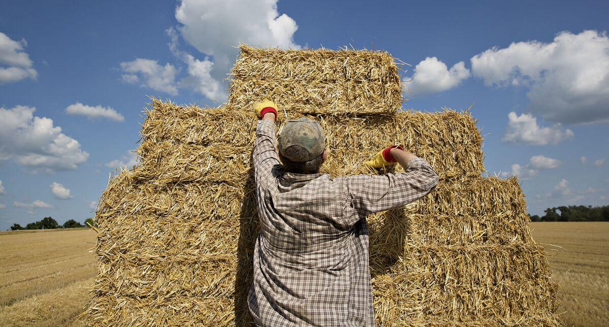 Health-Care Mess Makes Farming Even Riskier