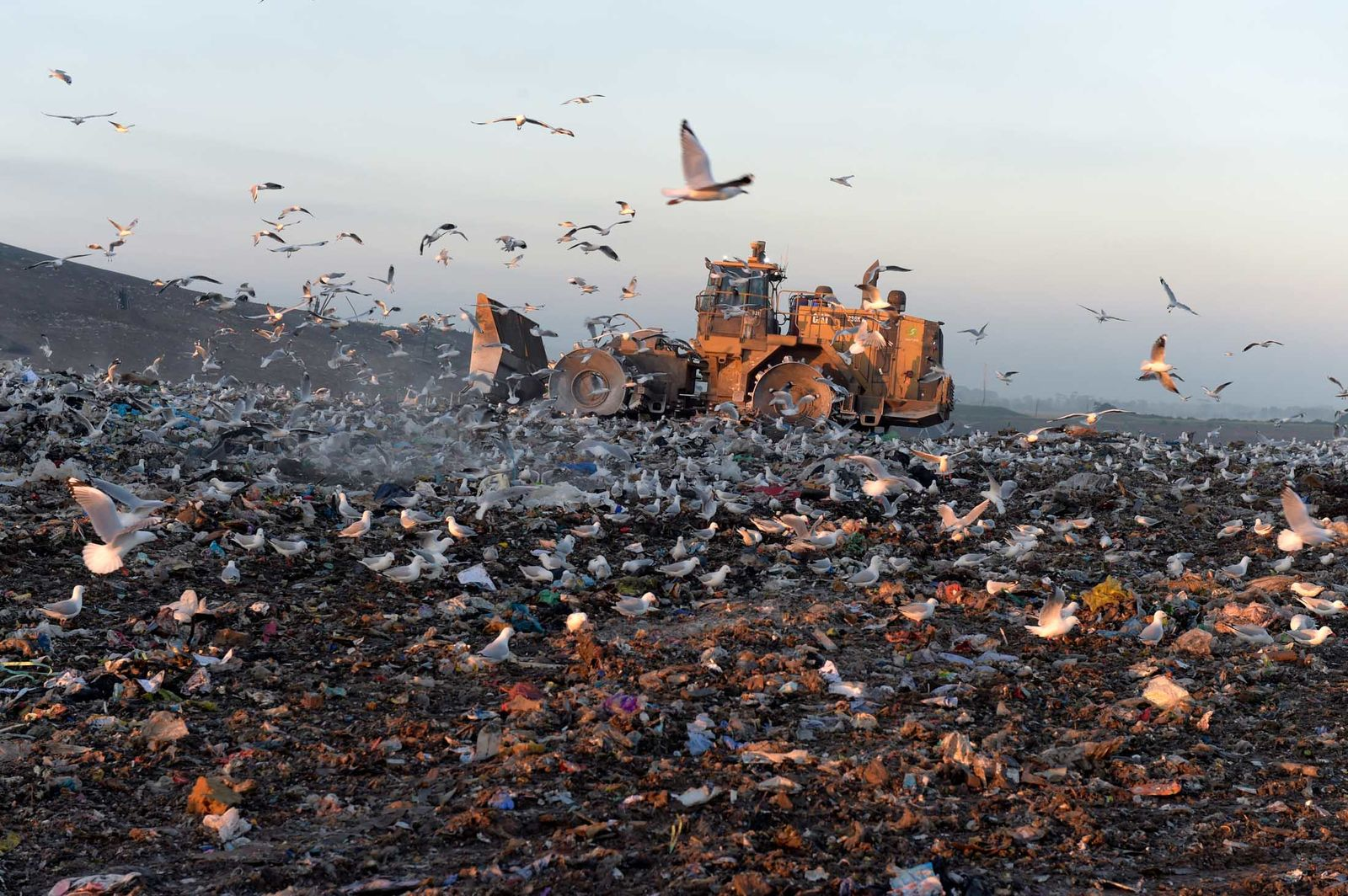 landfill All landfills in gwinnett county are privately owned and charge a fee for materials taken to their facility if you are unsure that the landfill will accept your items, call the numbers provided.