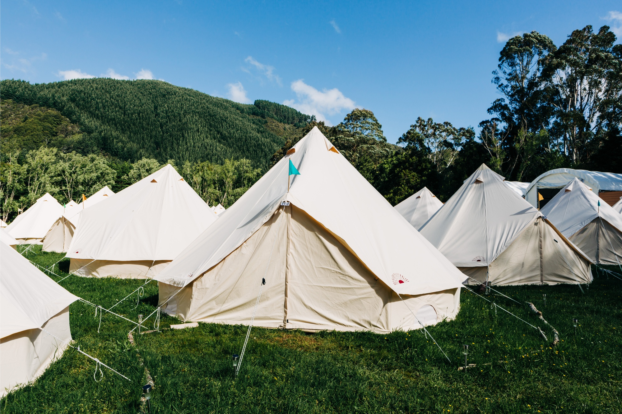 New Zealand Visa Requires Positive Energy And A Week In A Yurt Bloomberg Yurtnewzealand.co.nz is tracked by us since november, 2019. new zealand visa requires positive