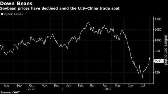 U.S. Unlikely to Replace Loss of China Soy Buying, Bunge Says