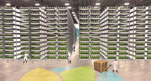 AeroFarms is building the world's largest vertical farm in Newark in the U.S.