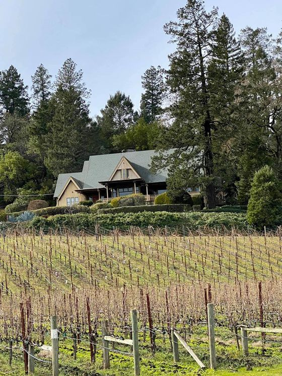 Posh French Winemakers Pounce on Big American Vineyard Selloff