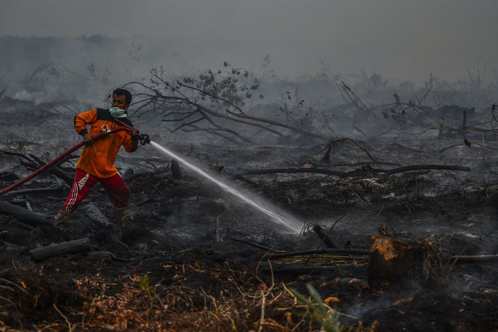 Firefighters battles a forest fire in Kampar, Riau Province on Sept. 9.