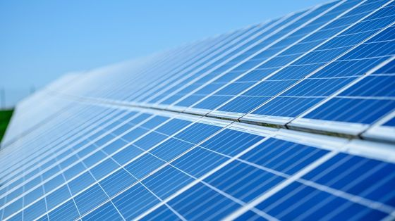India Policy Support Draws Investors in Renewables, Avaada Says