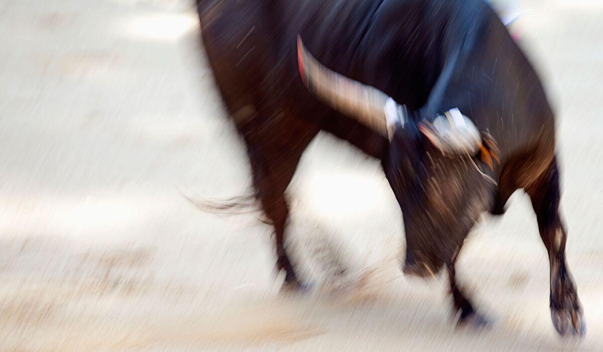Raging Bull Markets: How Young Men's Hormones Unsettle Finance