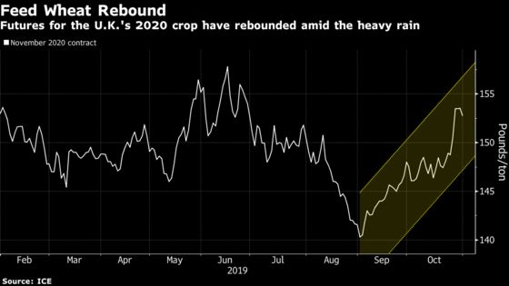 Too Wet, Too Dry: Wheat Season Gets Off to a Mixed Start