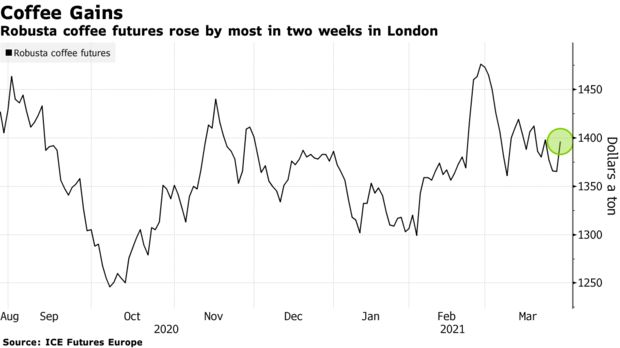Robusta coffee futures rose by most in two weeks in London