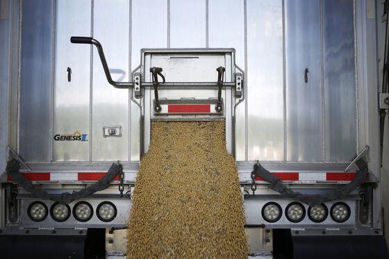 Trump's Trade War Aid to Farmers Risks Worsening Crop Stockpiles