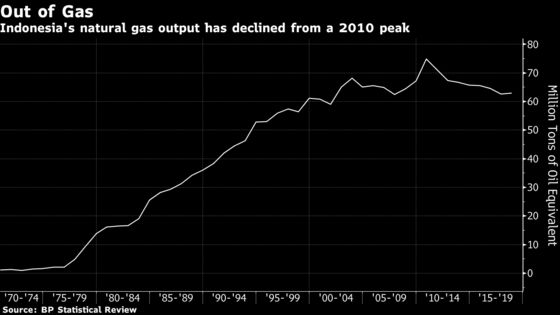 Oil-Rich Family Bets Its Millions on Cleaner Fuel in Indonesia