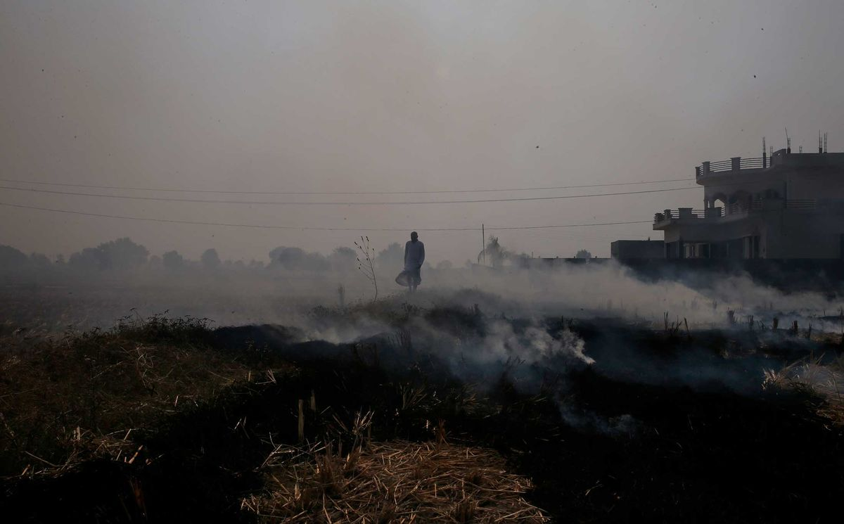 China's and India's Fight Against Pollution While Modernizing