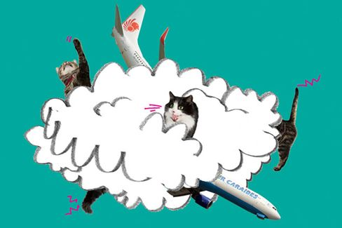 The Boeing-Airbus Catfight Is Just Fun, Silly Hissing