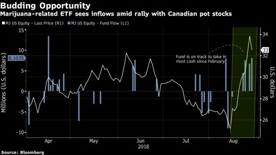 American Investors Pile Into Marijuana ETF