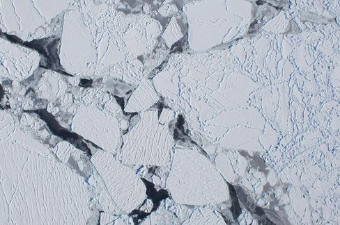Antarctic Sea Ice Cover Sees 'Slight Expansion,' Scientists Say