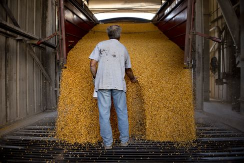 Tightest Corn Crop Since '74 as Goldman Sees Rally